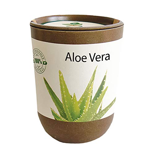 Feel Green Ecocan, Aloe Vera Exotics, Idée Cadeau (100% Biodégradable), Grow-Your-Own/Kit Prêt-à-Pousser, Le Pot Écologique Qui Croît 9 x 7 cm, Produit en Autriche