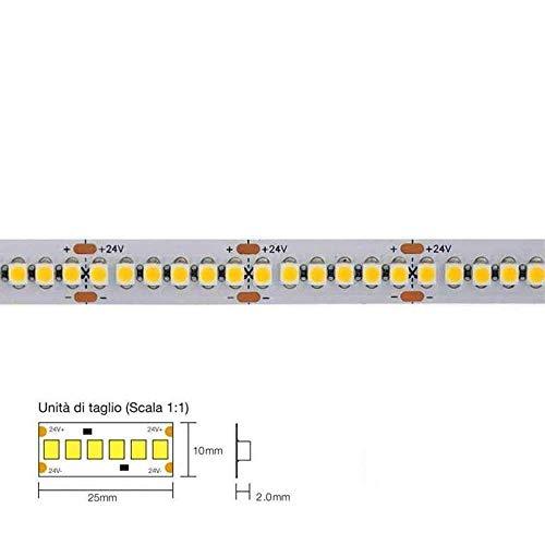 KingLed - Strip LED Serie Classic 96W Luce Naturale - Striscia LED Luce Omogenea 17.8W/mt 24V IP20 PCB 10mm, Bobina da 1200 SMD 3528 Singola Fila cod. 1018