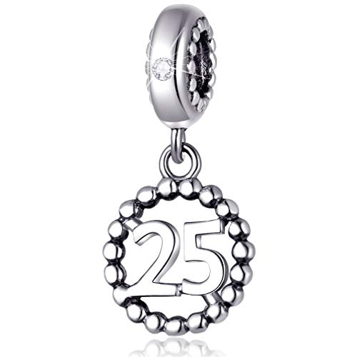25 Number Bracelet Charms, 925 Sterling Silver Pendants Beads Fit Pandora Charm Bracelets, Necklace, Dangling Dangle Charm for 25th Birthday