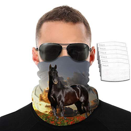 Amapolas y caballo negro hombres mujeres deportes al aire libre resistente al viento transpirable variedad toalla facial