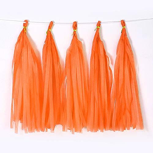 Bining 9.8in Orange Tissue Paper Tassel DIY Hanging paper decorations Party Garland Decor for Party Decorations Wedding,Festival,Baby Shower Decoration 20PCS (Orange 25CM)