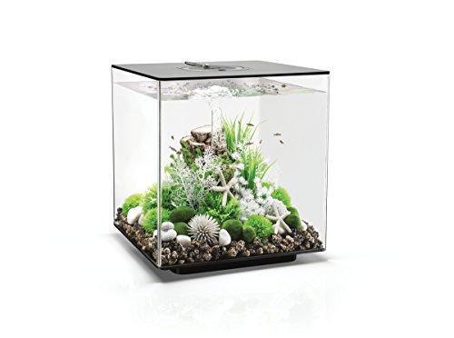 Oase Biorb Cube 60 LED pour Aquarium Noir 11 kg