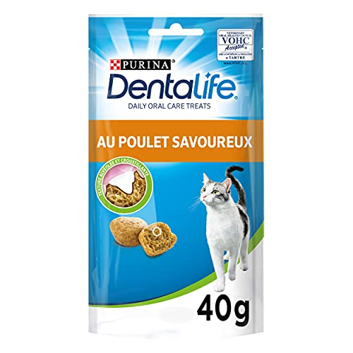 dentalife chat carrefour