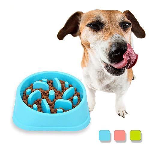 SATOHA Perro Recipiente para Perros Lenta Plato de Comida para Perros y Gatos contra tazón Bucle prevenir Las Mascotas de ser estrangulado Porque comen Demasiado rápido (Azul)