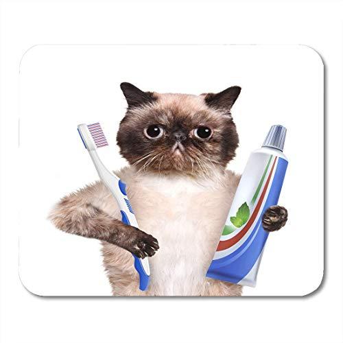 Gaming Mouse Pad Tierbürsten Zähne Katze Zahngesundheit Zahnbürste Badezimmer Beauty Rechteck Mausmatte Rutschfeste Gummibasis Mousepads Für Computer, Laptop