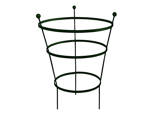 Garden Pride Peony Cage Plant Support - Available in plastic coated or raw steel, designed to rust - Heavy Duty Peony Cage plant Support (Pair - Raw Steel), 62cm Tall - Pack of 2