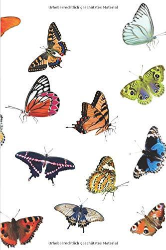 Notizbuch Schmetterling: Notizbuch / Tagebuch mit Schmetterling Motiv