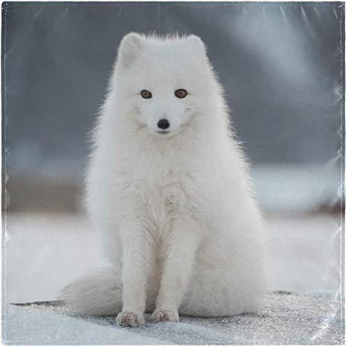 BONRI Set von 4 schönen weißen Polarfuchs Tier auf Winter Schneetuch Servietten Waschbare Polyester Abendessen Servietten für Esstisch Hochzeitsfeier Herbstferien-Multicolor-1 20
