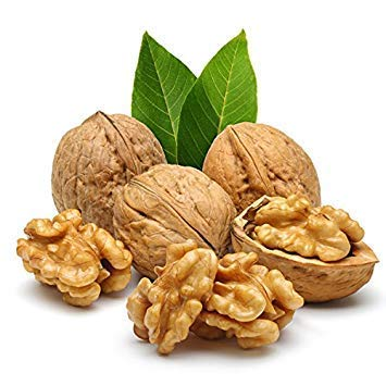 Vistaric 3 teile/beutel Immergrüne Walnuss Samen Organische Nicht-GMO Köstliche Obst Nussbaum Bonsai Topf Nahrhafte Anlage für Garten Decor