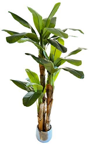 Bananera Artificial, Elaborados con los Mejores Materiales, Ideal para Decoración de hogar, Planta, Árbol Artificial (210 cm)