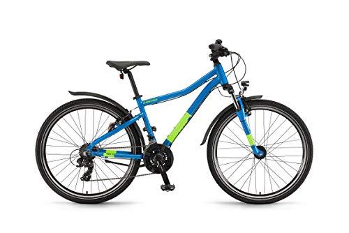 Winora Rage 26 Kinder & Jugend All Terrain Bike 2020 (50cm, Platinumblue)