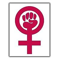 フェミニズムシンボルフェミニストティンサイン壁鉄の絵レトロプラークヴィンテージ金属板装飾ポスターおかしいポスター吊り工芸品バーガレージカフェホーム