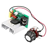 Dgtrhted Controlador electrónico de Velocidad de CA 0-220V 8000W Motor de CA de Alta regulador de...