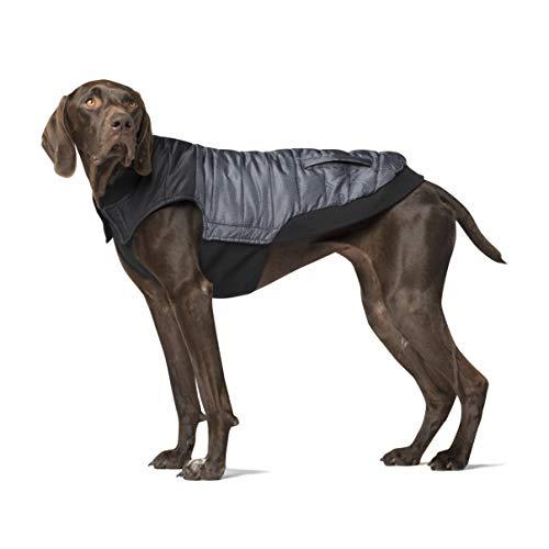 Canada Pooch CP01194 Summit Stretch Vest Grey Pepper 22 Manteau pour Chien