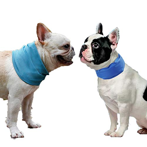 2PCS Cooling Dog Collar with Adjustable Neck Scarf, Pet Chill Out for Summer 3 Different Sizes Cooling Collar (S)