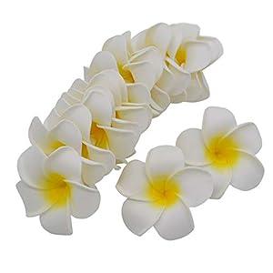 ShineBear 10Pcs 5CM/6CM/7CM/8CM9CM Plumeria Foam Frangipani Flower Artificial Silk Fake Egg Flower for Wedding Party Home Decoration 7Z