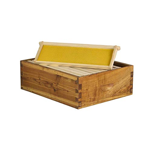 Hoover Hives 10 Frame Langstroth Medium Super Box Dipped in 100% Beeswax Includes Wooden Frames & Waxed Foundations (Unassembled)