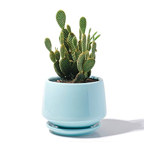 "POTEY Ceramic Plant Pot Flower Planters - 5.9"" with Drainage Hole Saucer Medium Pots for Indoor Plant - Enough Space - Turquoise"