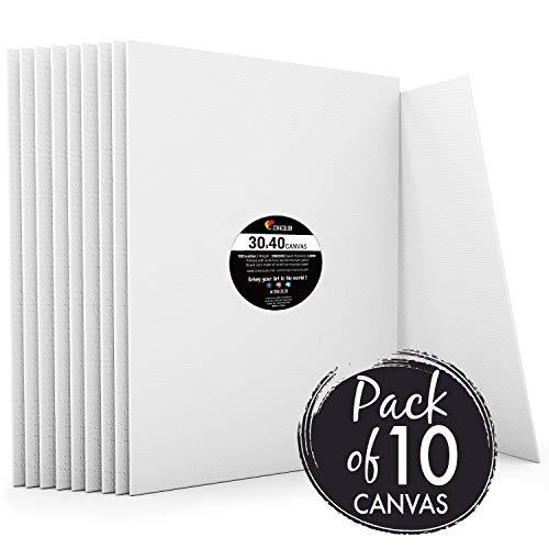 Zenacolor - Set de 10 Canvas - Lienzos para Pintar 30x40cm -