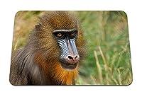 26cmx21cm マウスパッド (マンドリル猿の顔の着色) パターンカスタムの マウスパッド