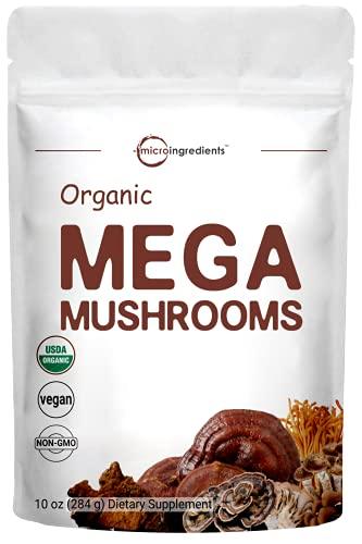 MicroIngredients Mushroom Powder
