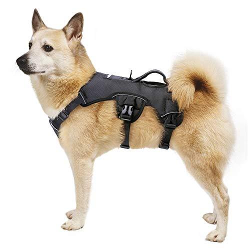 rabbitgoo Hundegeschirr für Mittlegroße Hunde Welpe Brustgeschirr mit Tragegriff Anti Zug Sicherheitsgeschirr No-Pull Dog Harness Reflektierend Geschirr Verstellbar Hundeweste Atmungsaktiv