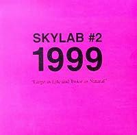Skylab No.2