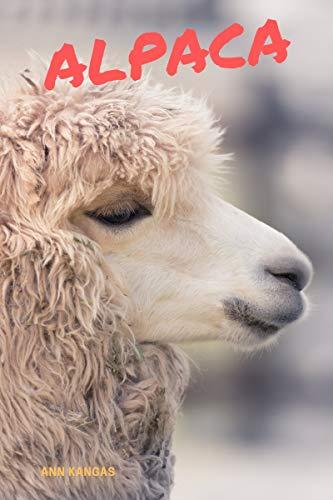 Alpaca: Fun Facts for Kids (English Edition)