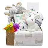 Kelzia canastilla para bebé recién nacido - caja de regalo de bienvenida con ropa de algodón, pañales y toallitas biodegradables, peluche y más - vegano, algodón hipoalergénico - unisex (bbox 3)