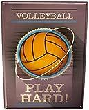 Froy Volleyball Wand Blechschild Retro Eisen Poster Malerei