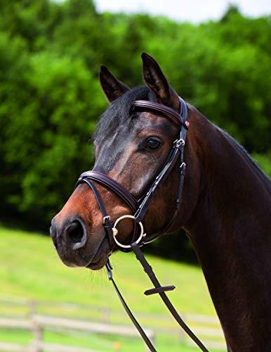 Kieffer 395/43550 Snaffle Bridle Ergonomic Event, G - Pony, Black
