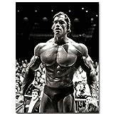 Leinwand Malerei Arnold Schwarzenegger Bodybuilding Poster