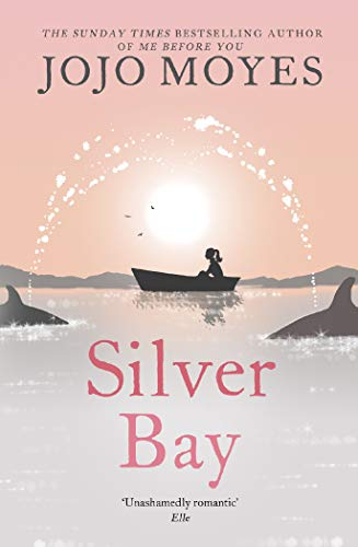 Silver Bay: 'Surprising and genuinely moving' - The Times (English Edition)