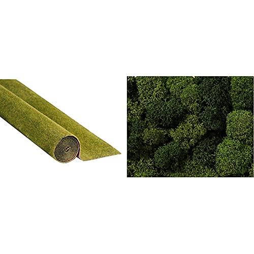 Noch 00265 - Grasmatte Wiese, 120 x 60 cm & 08610 - Spielwaren, Dekormoos, hell und dunkelgrün, Sortiert
