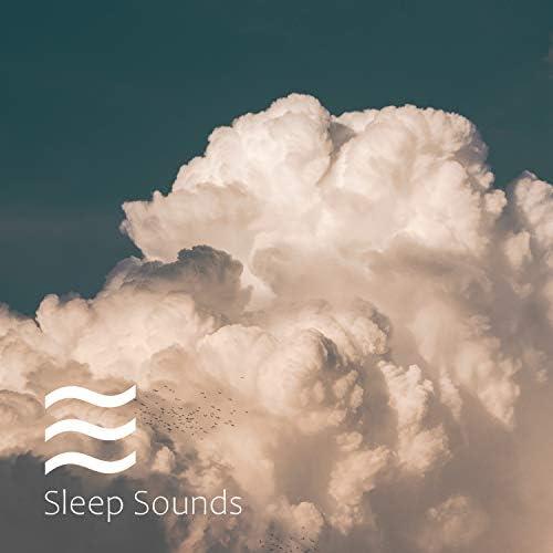 Womb Sound