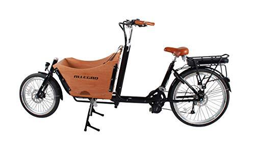 E-Bike Lastenfahrrad Allegro E-Cargo Transport kaufen  Bild 1*