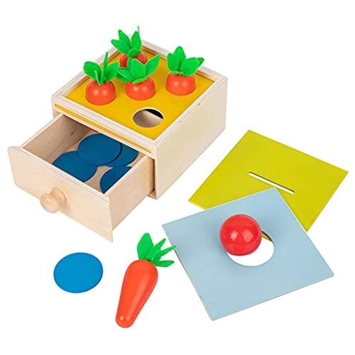 Sharplace Material Montessori, Caja de permanencia de Objetos, Bandeja de Juguete de Madera y Bola, Juego de clasificación de Zanahorias, Caja de Monedas, Caja