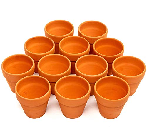 12 Vasi da Fiori di Terracotta Ceramica, 8cm - Mini Cactus Piante Grasse Succulento Miniatura Vasi per Piccoli Impianti - Perfetto per Arti e Mestieri, Matrimonio Bomboniere, Decorazioni.