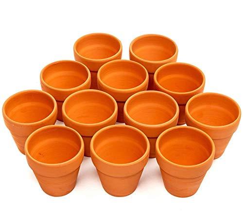Garden Mania - 12 Macetas para Flores de Terracota, Ollas de Barro Ceramico, 8cm - Mini Cactus Suculento Miniatura Macetas Pequeñas para Artes y Oficios, Favores de Boda, Decoración.