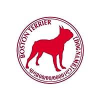 ワラ犬 ボストンテリア 横向き ステッカー Cパターン ガール シルバーメタリック