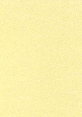 Decadry PCL1807 Carta Pergamenata, A3, Champagne, 165 G/Mq, Confezione da 25
