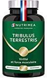 TRIBULUS TERRESTRIS - 900 mg - 120 gélules vegan - Source d'énergie - Performances sportives -...
