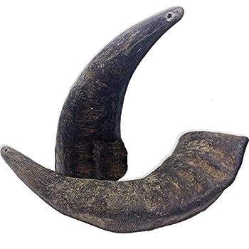 2 Pack of Buffalo Hornz Medium Long Lasting 100% Natural Water Buffalo Horn Dog Chews