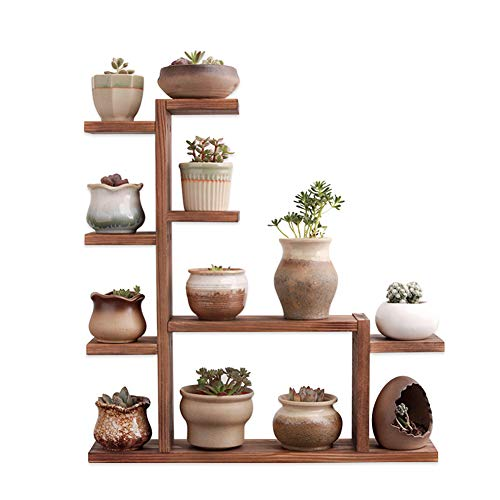 Echaprey Wood Plant Stand 4 Tier Tabletop Plant Stand Small Multi Tiered Plant Stand Wood Indoor Outdoor Decor for Succulents Pot (Carbonized Color)
