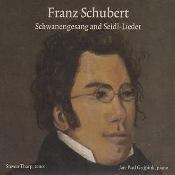 Schubert: Schwanengesang and Seidl-Lieder