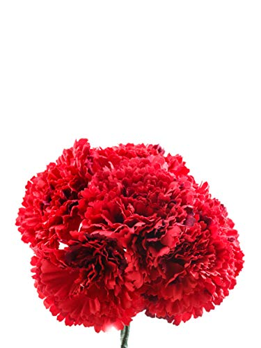 Ramillete de flamenca de claveles rojo