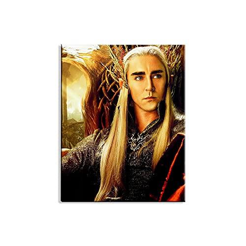 Visionpz 5D Diamond Drawing Kits The Hobbit 2: Thranduil Movie Poster DIY Cross Stitch Stickerei Malerei Kits Stickerei Set Kreuzstich Bilder Diamond Painting Anfänger Full Set 40x50cm,Ohne Rahmen
