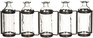 Sullivans Glass Vase Set, 15.5 x 6.5 Inches, Hinged Metal Holder, Clear, Set of 5 (G6412)