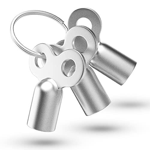 3x Entlüftungsschlüssel | Universal - alle Heizkörper | mit Ring zum Aufhängen | 5mm | Zinklegierung | Schlüssel zum Entlüften | Lüften aller Heizungen möglich | radiator key Entlüfter Heizung