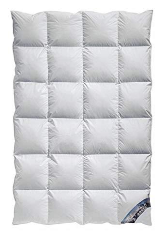 Kassetten Daunendecke Winterdecke extra-warm Wärmegrad 5 100% arktischer Daunenflaum 100% Natur - vom Betten Fachgeschäft (135x200 cm)